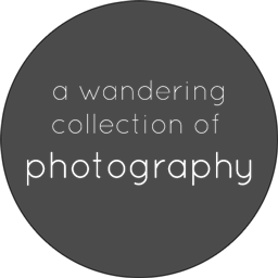 label-photography01